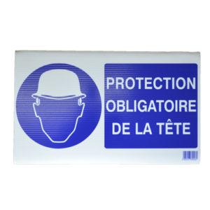 protection obligatoire